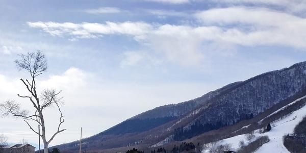 buy-now-ski-later-offer